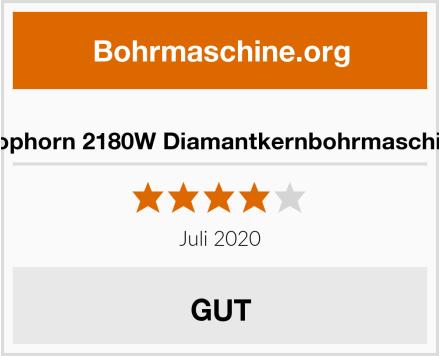 Mophorn 2180W Diamantkernbohrmaschine Test