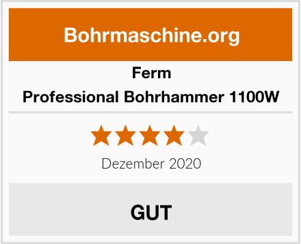 Ferm Professional Bohrhammer 1100W Test