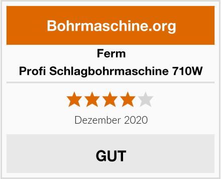 Ferm Profi Schlagbohrmaschine 710W Test